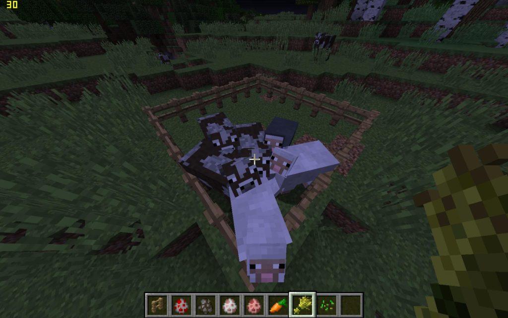 Minecraft коровы