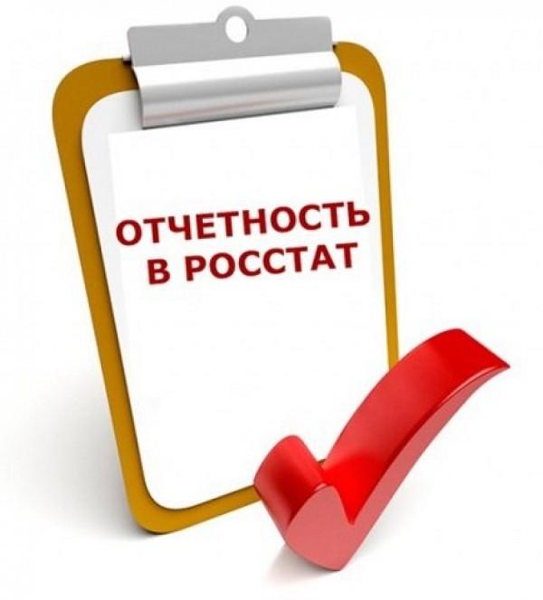 Статистическая отчетность за 2019 год: для ООО и ИП. Видео
